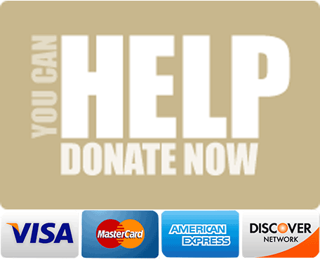 You Can Help. Donate Now. Visa, Mastercard, American Express, Discover